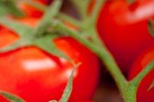 cherry tomatoes 053.jpg