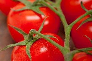 cherry tomatoes 052.jpg