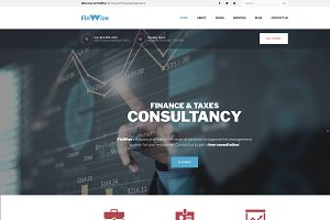 FinWiz Financial Consulting Company