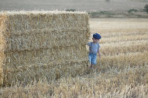 little boy on a stack of hay
