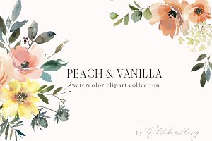 Peach & Vanilla Watercolor Clipart