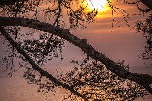 Sunset / sea