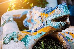 Multicolored Mosaic Salamander El