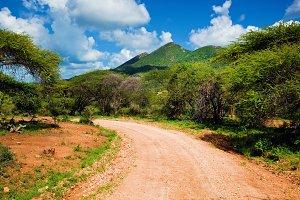 Red ground road, Tsavo West