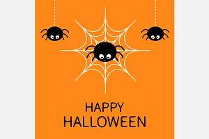 Happy Halloween. Spider on the web