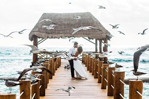 Seagulls fly over gorgeous couple