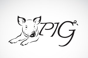 Vector design a pig is text. Animal.