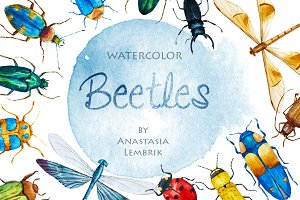 Watercolor beetles set