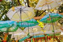 Concept shot of umbrellas