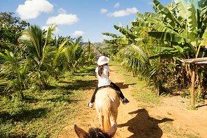 Tourist in riding horse between bana
