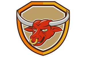 Texas Longhorn Red Bull Head Shield