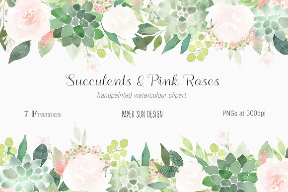 Succulents and Pinks Roses Frames