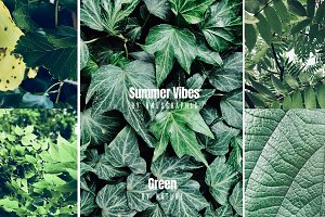 Summer Vibes Green Photo Pack