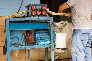 Man prepares the cane juice