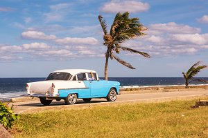 Old car and palm trees on the waterf