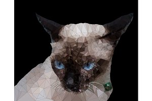 Low poly geometric of Siamese cat