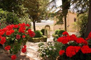 Garden of Rey Moorish