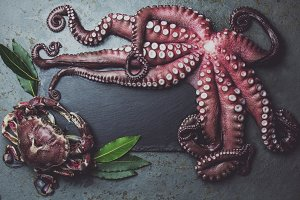 Raw fresh octopus on wooden table