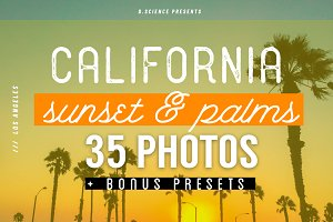 Sunset & Palm Trees Photo Bundle