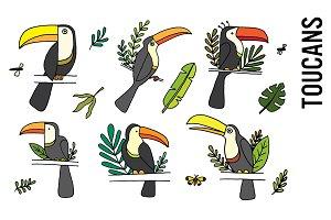Toucan Tropical Doodle Clipart