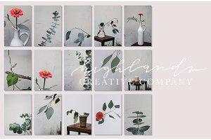 Floral Bundle | Pink Eucalyptus