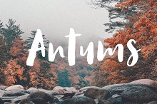 Antums Brush by  in Display Fonts