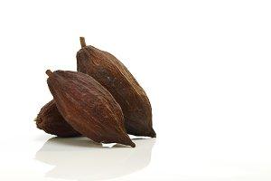 Cacao fruit on white background