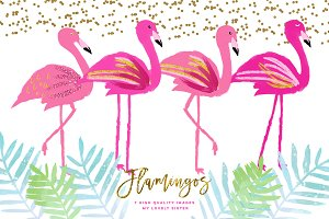 Pink Flamingo clipart