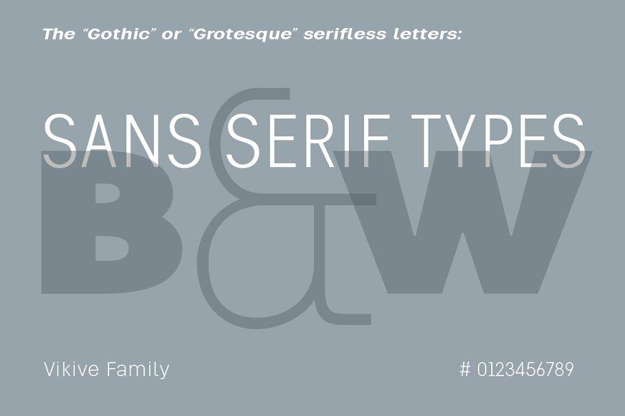 Vikive Family ~ Sans Serif Fonts ~ Creative Market