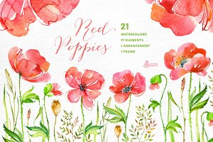 Red Poppies. Floral collection