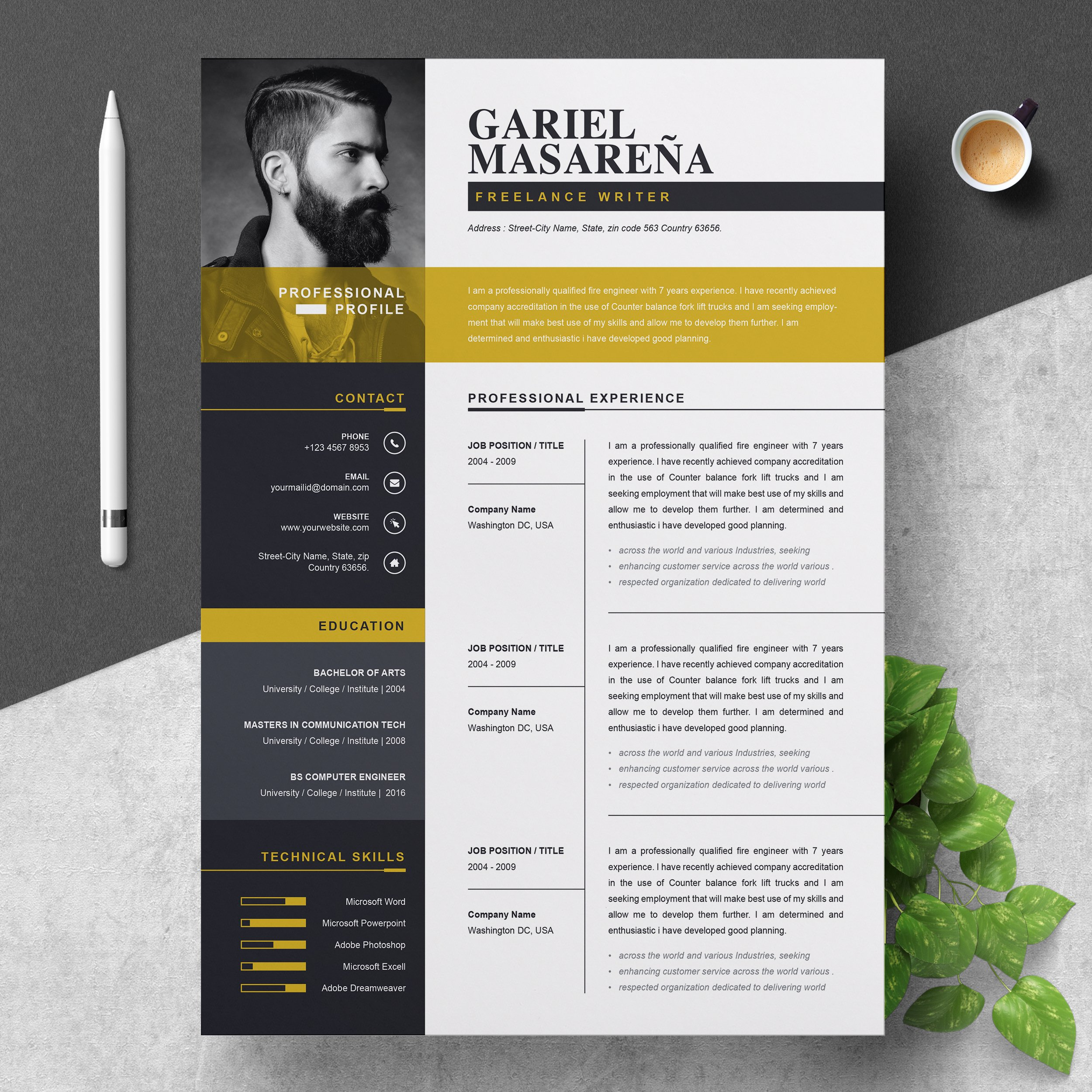 Professional Resume Templates Free: Professional Word Resume CV Template