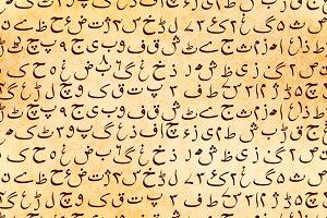 Urdu manuscript on ancient parchment