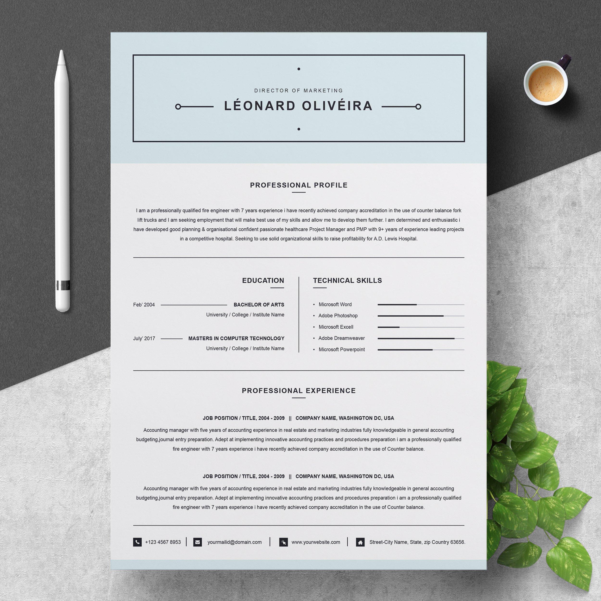 clean resume template  simple cv  resume templates