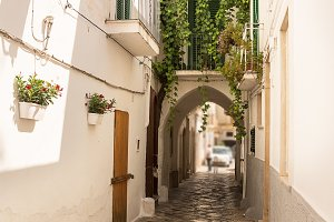 Alleyway and arch in the historic ce