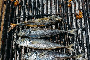 Grilled mackerel fish