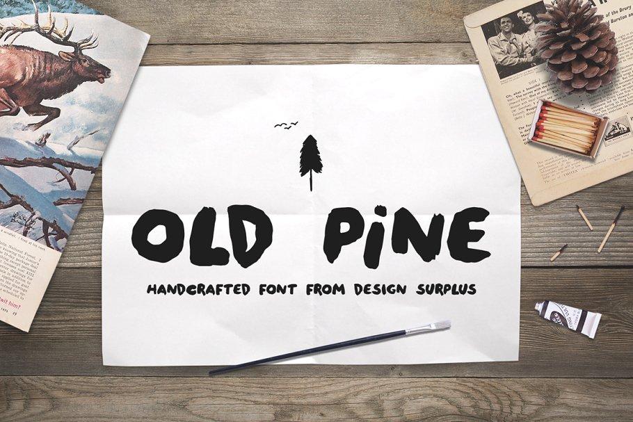 Old Pine Font + Extras ~ Sans Serif Fonts ~ Creative Market