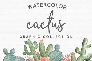 40+ Watercolor Cactus Illustrations