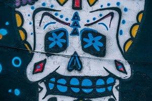 Artistic White Mexican Skull Art