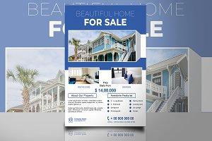 Real Estate Flyer V842
