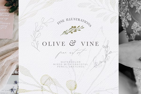 Illustrations and Illustration Products: Laras Wonderland - Olive Watercolor & Illustrations