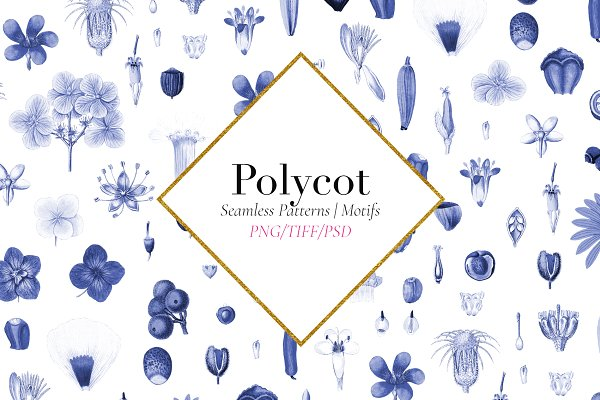 POLYCOT Exquisite collectibles!