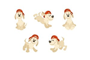 Puppy dog character design set