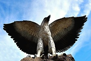 Wooden statue of an eagle