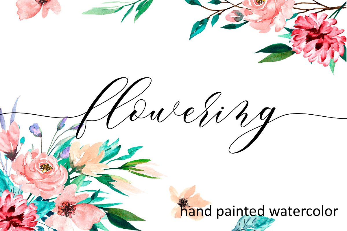 Watercolor flower set, hand drawn. in Illustrations