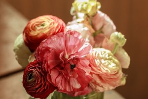 Bouquet of colorful ranunculus
