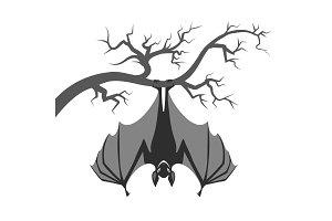 Bat on branch