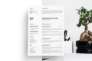 5 Page Resume. CV Design.CV Template