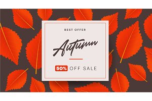 Autumn background layout decorate
