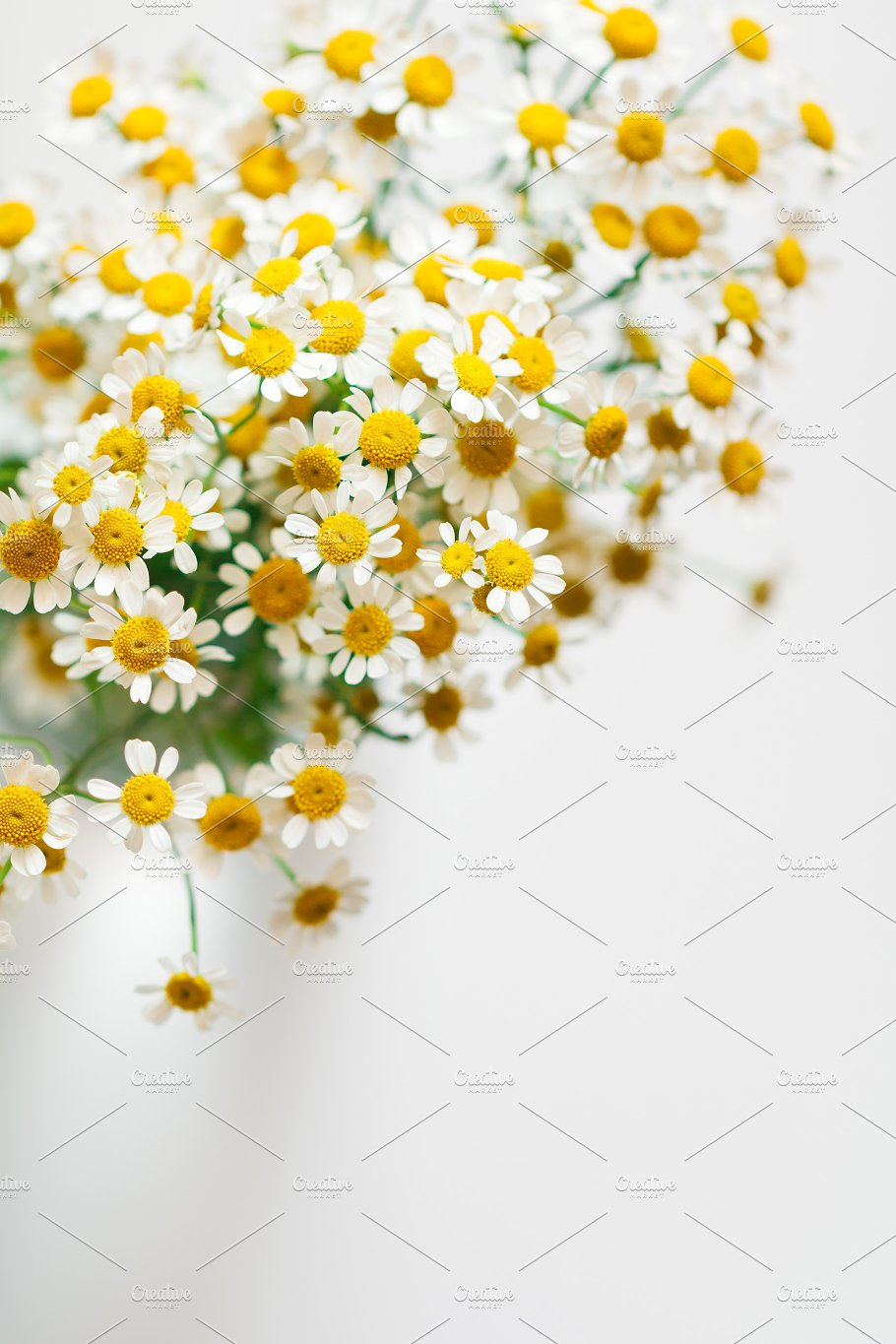 Little daisy flowers bouquet little daisy flowers bouquet arts entertainment izmirmasajfo