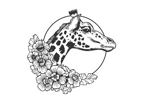 Giraffe head animal engraving vector